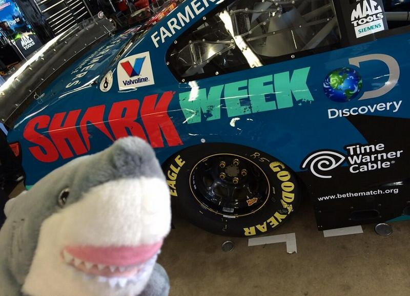 Kasey Kahne driving Shark Week paint scheme at New ...